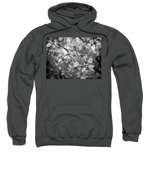 Akebono In Monochrome Sweatshirt by Peggy Hughes