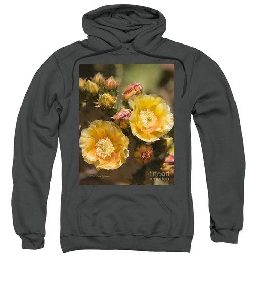 'albispina' Cactus Blooms Sweatshirt