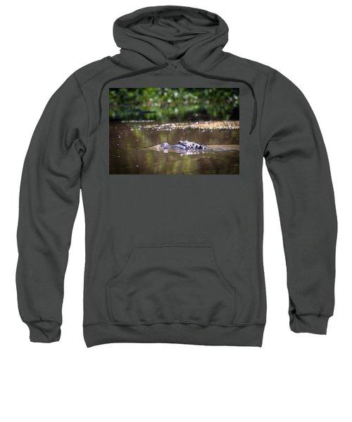 Alligator Swimming In Bayou 1 Sweatshirt