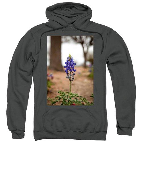 Alone In The Woods Sweatshirt