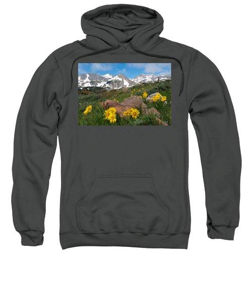 Alpine Sunflower Mountain Landscape Sweatshirt
