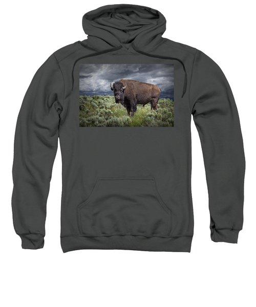 American Buffalo Or Bison In Yellowstone Sweatshirt