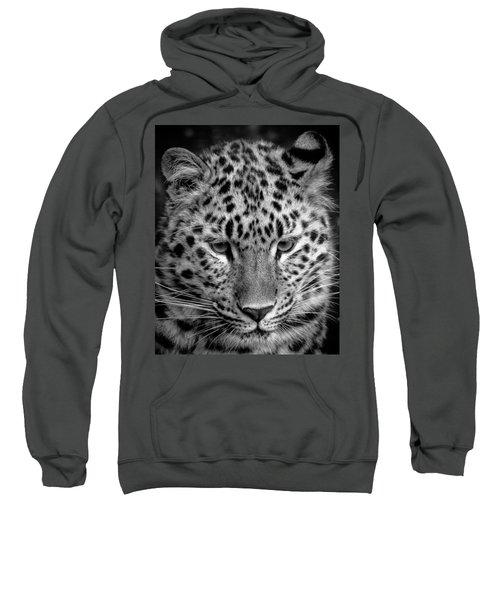 Amur Leopard In Black And White Sweatshirt