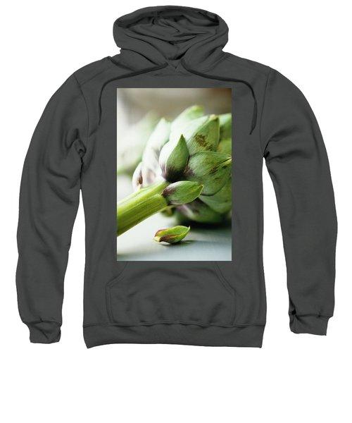 An Artichoke Sweatshirt by Romulo Yanes