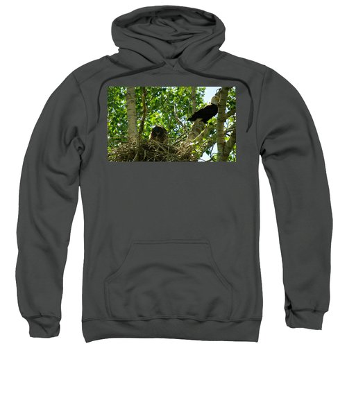 An Eagle And Its Young Sweatshirt