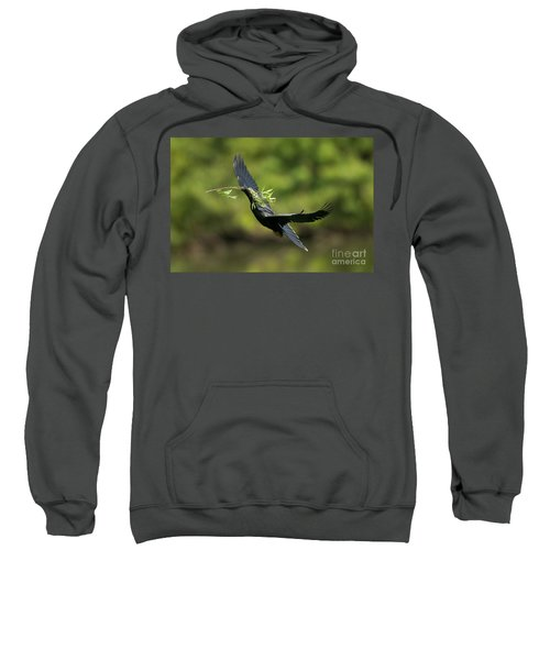 Anhinga Sweatshirt by Anthony Mercieca