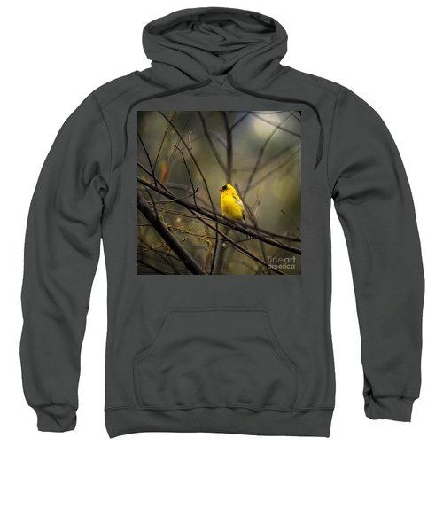 April Showers In Square Format Sweatshirt