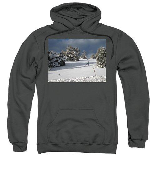 Arizona Snow 3 Sweatshirt