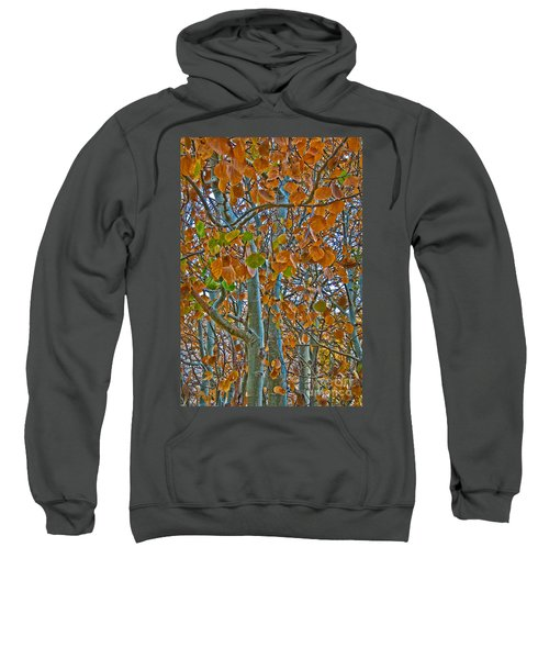 Sweatshirt featuring the photograph Aspen Leaves In The Fall by Mae Wertz