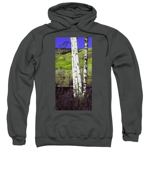 Aspens 4 Sweatshirt