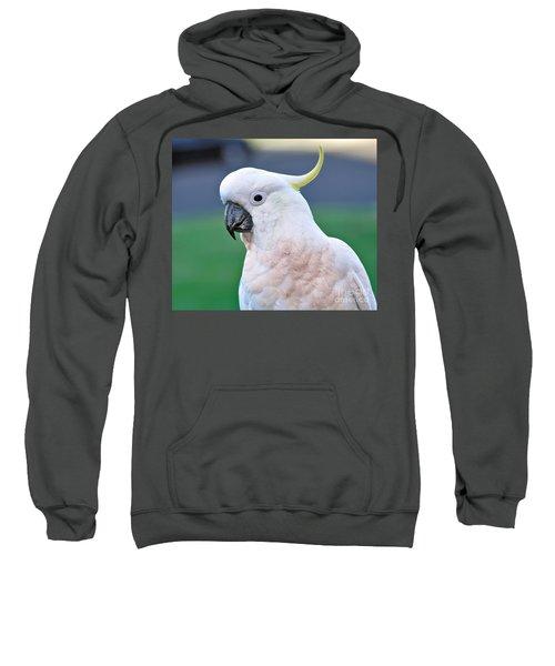 Australian Birds - Cockatoo Sweatshirt