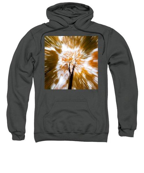 Autumn Explosion Sweatshirt