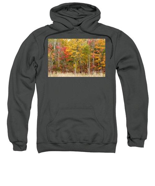 Autumn In Muskoka Sweatshirt