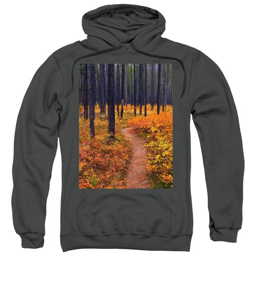 Autumn In Yellowstone Sweatshirt