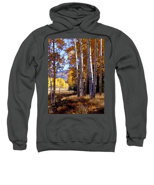 Autumn Paint Chama New Mexico Sweatshirt