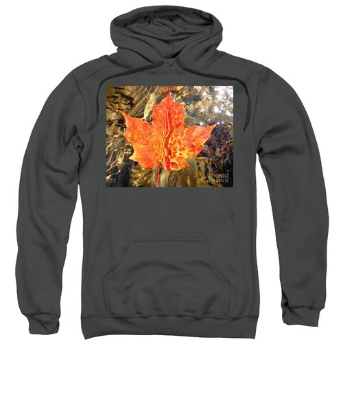 Autumn Reflections Sweatshirt
