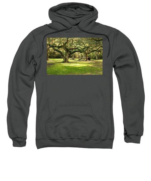 Avery Island Oaks Sweatshirt