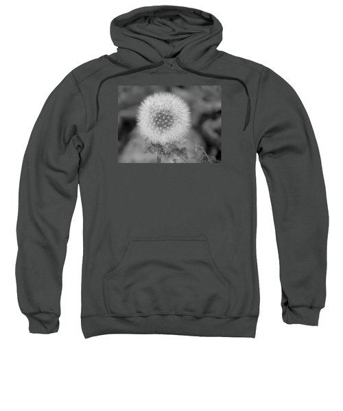 B And W Seed Head Sweatshirt