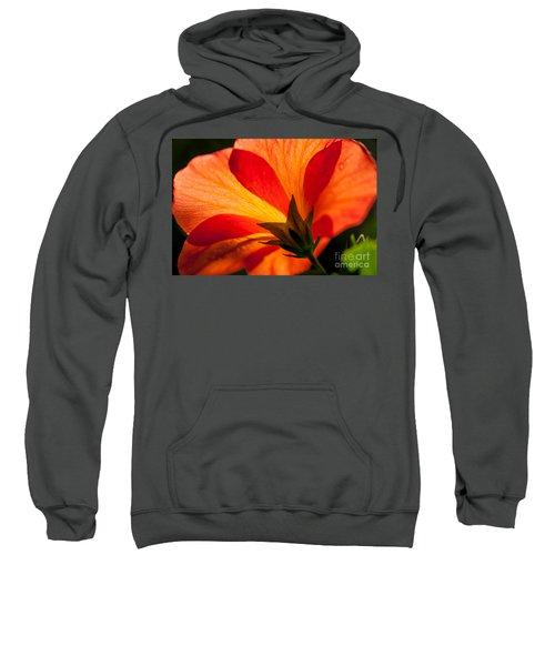 Back Lit Sweatshirt