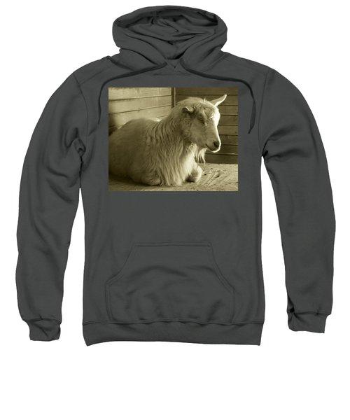 Barn Life Sweatshirt