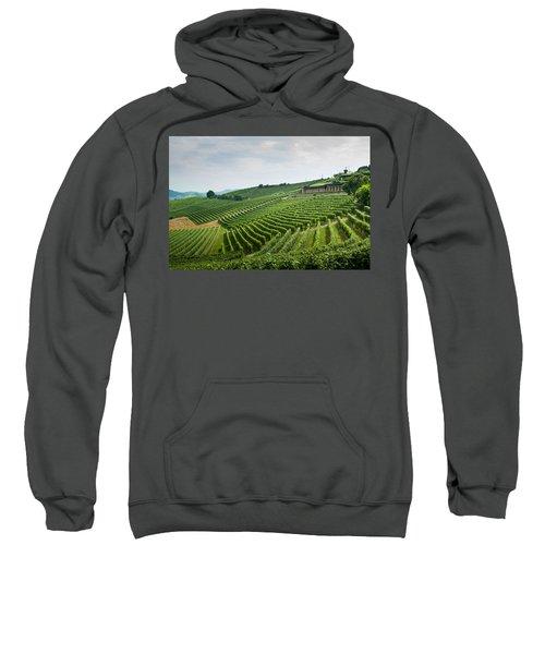 Barolo Sweatshirt by Alex Lapidus