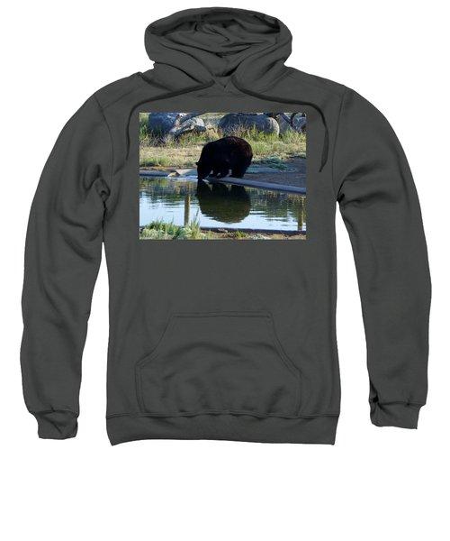 Bear 4 Sweatshirt