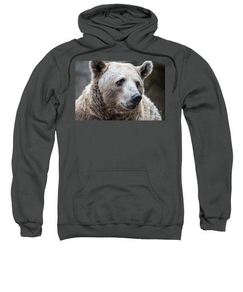 Bear Necessities Sweatshirt