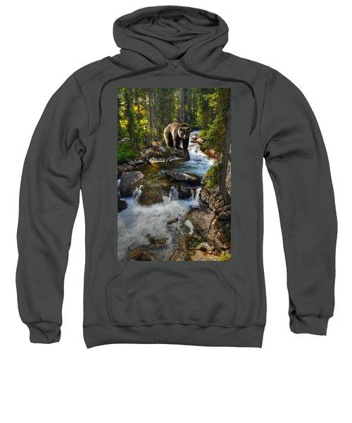 Bear Necessity Sweatshirt