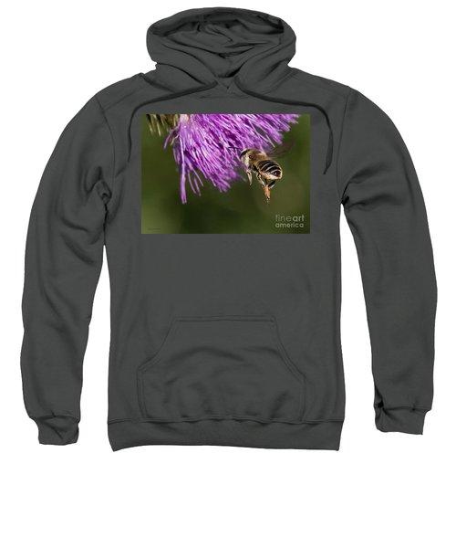 Bee Butt Sweatshirt