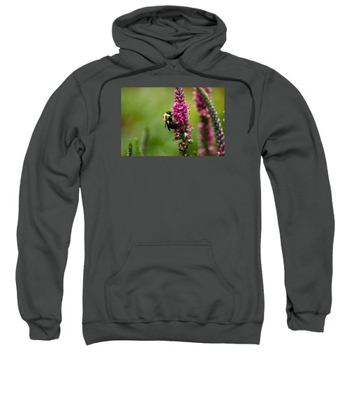 Bee Heaven Sweatshirt