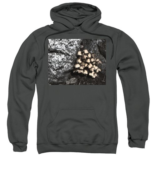 Between The Rocks Sweatshirt