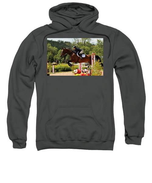 Big Jumper Sweatshirt
