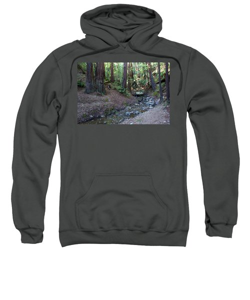 Bigfoot On Mt. Tamalpais Sweatshirt