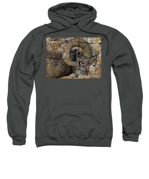 Bighorn Rock Art Sweatshirt