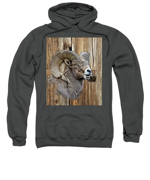 Bighorn Sheep Barnwood Sweatshirt