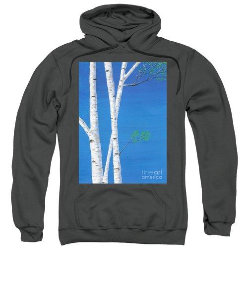 Birch Trees Sweatshirt