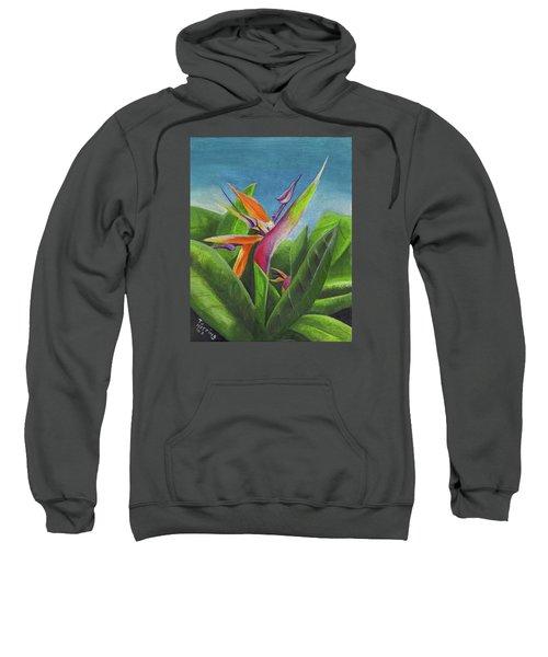 Hawaiian Bird Of Paradise Sweatshirt
