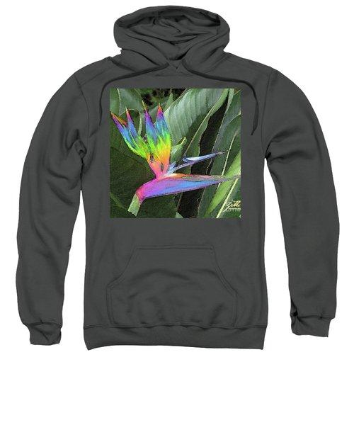 Bird Ow  Paradise Sweatshirt by Suzette Kallen