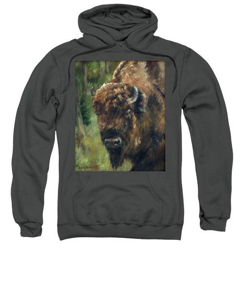 Bison Study - Zero Three Sweatshirt