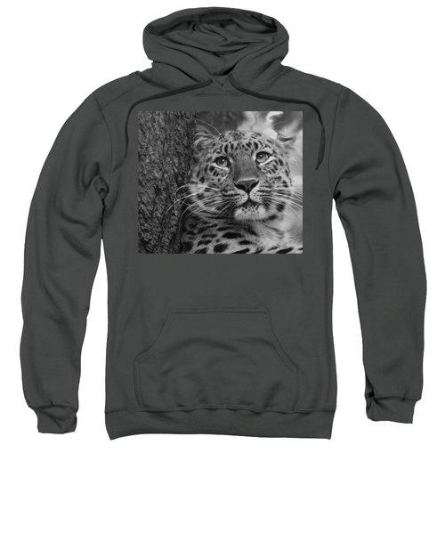 Black And White Amur Leopard Sweatshirt