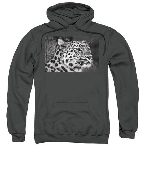 Black And White - Amur Leopard Portrait Sweatshirt