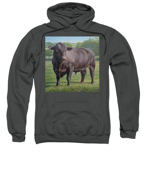Black Angus Bull 2 Sweatshirt