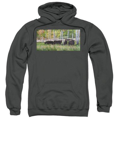 Black Angus Grazing Sweatshirt