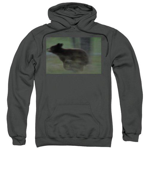 Black Bear Cub Running Sweatshirt