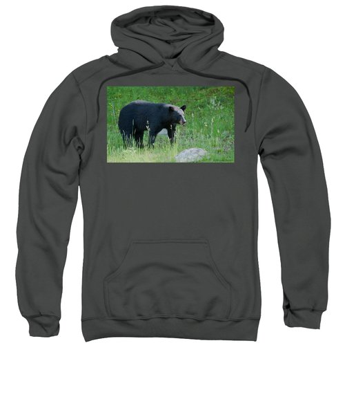 Black Bear Female Sweatshirt