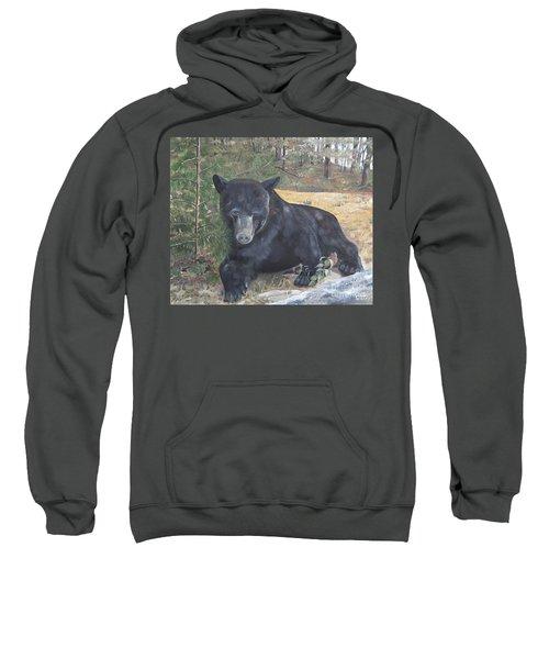 Black Bear - Wildlife Art -scruffy Sweatshirt