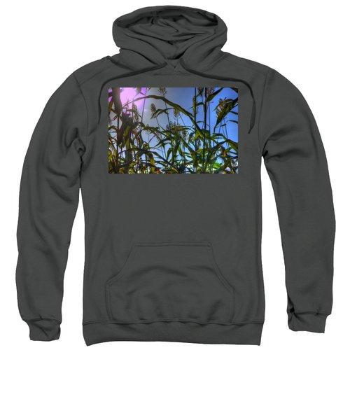 Blazing Rays Sweatshirt
