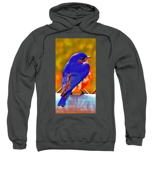Blue Beauty 2013 Sweatshirt