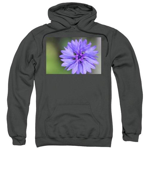 Blue Button Sweatshirt