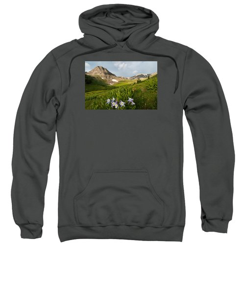 Handie's Peak And Blue Columbine On A Summer Morning Sweatshirt